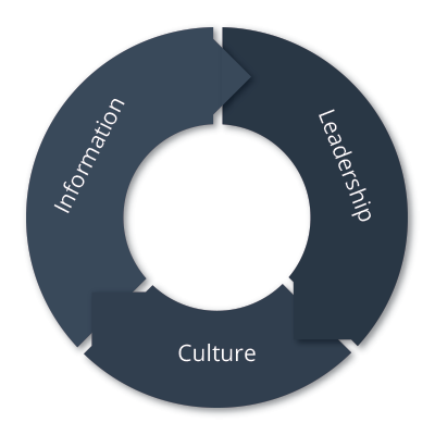 Leading Culture Life Cycle