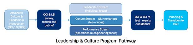 leading-culture-diagram2